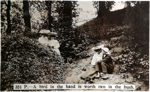 Vintage postcard. A bird in the hand is worth two in the bush