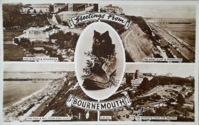 Vintage Bournemouth postcard