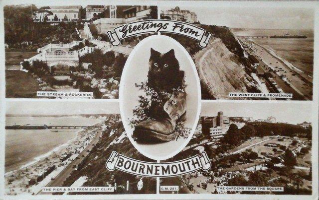 Vintage Bournemouth postcard