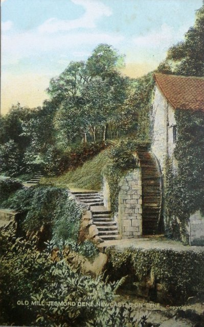 Old Mill, Jesmond Dene, Newcastle on Tyne, vintage postcard