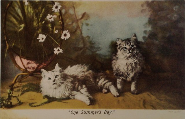 One Summers Day, vintage postcard, kittens