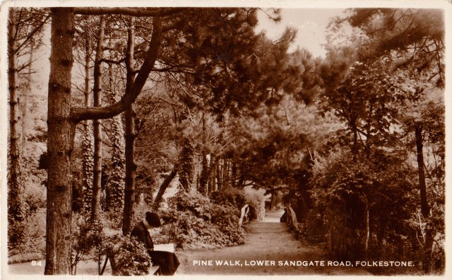 Vintage postcard of Pine Walk, Lower Sandgate Rd, Folkestone, Kent