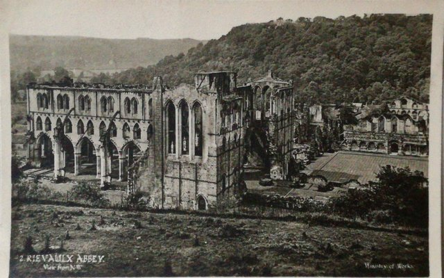 Rievaulx Abbey, View from NW