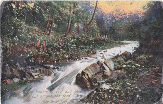 Vintage postcard of The Brook, Tennyson