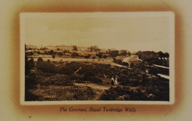 The Common, Royal Tunbridge Wells, Kent, vintage postcard
